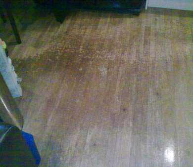 Damaged and worn wooden floor